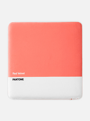 Red VelvetSM ARTIST + PANTONE™ SITTING CUSHION