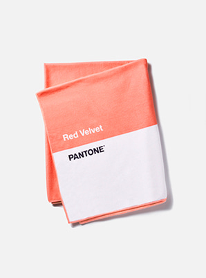 [MD &P!CK] Red Velvet  2019 SM ARTIST + PANTONE™ SUMMER BLANKET