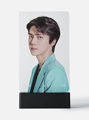 EXO-SC MOOD LIGHT PANEL - What a Life