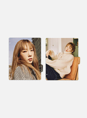 TAEYEON BINDER INDEX  - Purpose Repackage